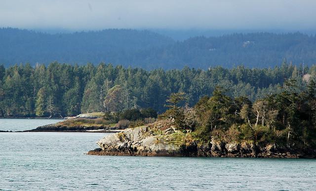 island shoreline 2