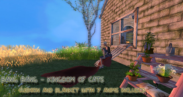 Bang Bang Lairs - Kingdom of Cats 2
