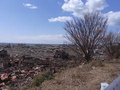 3/27 日和が丘