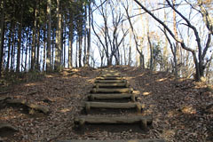 陣場山への道