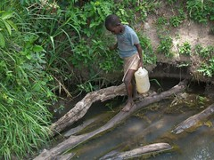 A boy walks across a slippery log
