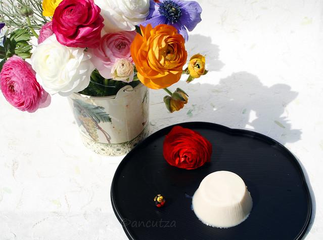 Budino al gelsomino e cioccolato bianco con agar agar