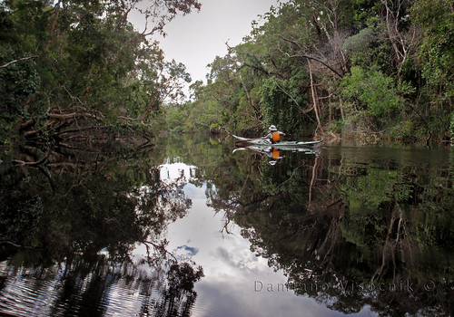 Upper Noosa River_MAR11_4_c