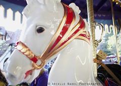Danbo Rides the Carousel (Arielle.Nadel) Tags: disneyland carousel disney cardboard fantasyland danbo kingarthurcarousel revoltech japanesefigurine danboard cardbo canon5dmarkii bunnyrel fromthemangayotsuba relphotography