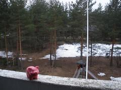 Pigsback Piggy in Imatra, Finland