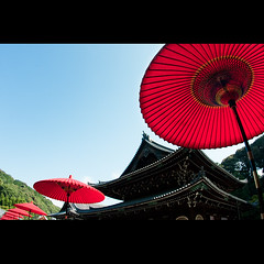 (Masahiro Makino) Tags: red japan umbrella photoshop canon temple eos kyoto tokina adobe   lightroom f3545    1017mm sennyuji  40d 20110423 gettyimagesjapanq2 20090917145017canoneos40dls640p