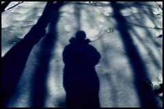 shadow SP (CJ (SI)) Tags: trees winter shadow portrait snow tree forest self hoodie nikon jacket sp 3100 d3100