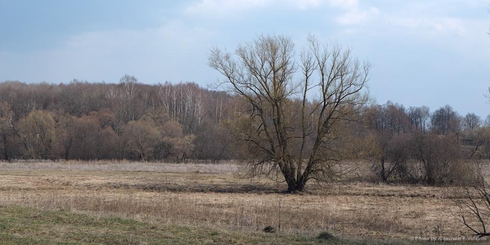 April landscape 2011 © Photo by Alexander Kondakov