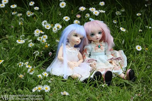 Lluvia & Aurora