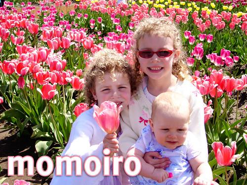 momoiro