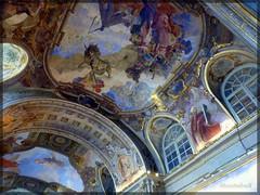 Salle des Illustres - Toulouse (MoutahaX) Tags: france perspective peinture toulouse plafond hautegaronne midipyrnes placeducapitole salledesillustres moutahax lumixfz45 panasonicdmcfz45