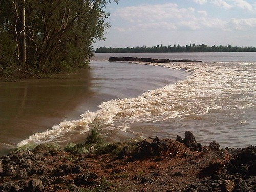 Edge of the inflow section, Bird's Point floodway. image by the US Army Corps of Engineers