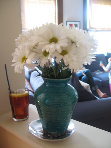 daisy a day, pimms