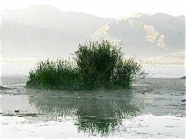 Ecuador-images
