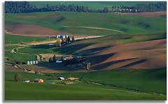 Farm in the Palouse Hills (walla2chick) Tags: barn shadows farm hills tanks palousehills steptoebutte paintingvenice topazadjust 2790tpza