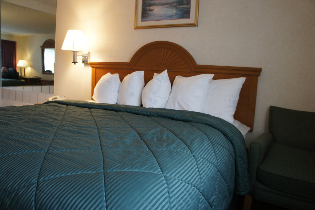 King-Bed - At Quality Inn Hotel in Boulder Colorado
