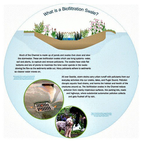 signage: What is a Biofiltration Swale? (by: City of Seattle)