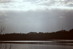 (Osyam-osyam) Tags: light sky sun white storm cold color reflection film nature water clouds river dark landscape grey mono woods shine gloomy bare branches horizon gray grain shore rays calmness