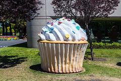 Google Android - Cupcake (PR Photography) Tags: california usa google northamerica mountainview