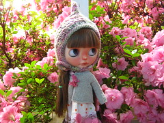 IMG_6675...Delightfully swallowed up by pink blossoms