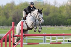 Sunday show bronze jumpers #showjumping #love #live #horse #horses #beautiful #photo #equine #photography #photographer #equestrian #bronzejumpers #trillium #derby #speedround #likeforlike #followme #follow #famous #country #photograph #dressage (equineography) Tags: horses horse love beautiful photography trillium photo photographer live famous country follow photograph equestrian derby equine showjumping followme dressage speedround likeforlike bronzejumpers