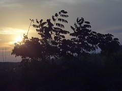DSC06449 Entardecer Em Monte Sio MG (familiapratta) Tags: sony dschx100v hx100v iso100 natureza sol cu nature sun sky
