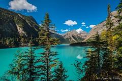 Kinney Lake - Mount Robson (robertopastor) Tags: amrica britishcolumbia canada canad fuji kinneylake montaasrocosas robertopastor viaje xt2 xf1024mmf4 mount robson