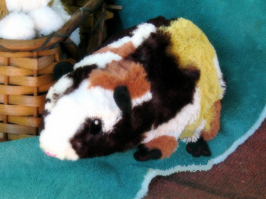 Ikea Guinea Pig
