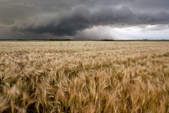 L'espoir (photosenvrac) Tags: photo ciel paysage orage beauce bl