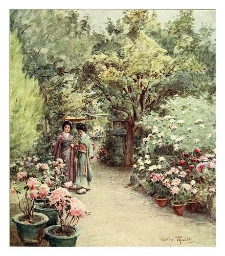 020-Peonias en un jardin de te en Kyoto-Japanese gardens 1912-Walter Tyndale