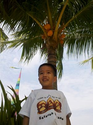 Julian under a coconut tree
