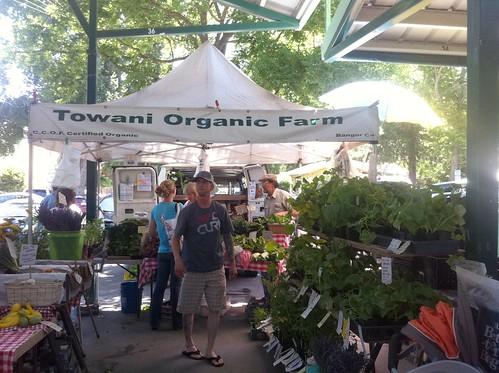Towani Organic Farm