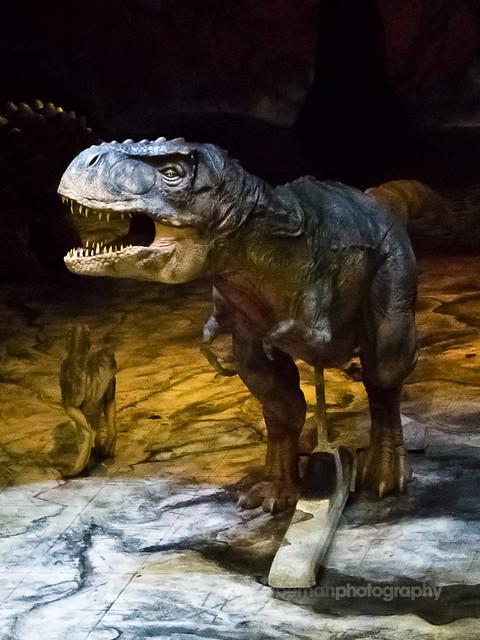 T Rex