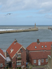 Harbour Entrance (Lazy B) Tags: houses light sea sky brick clouds march harbour gull entrance whitby walls beacon northyorkshire 2012 redroofs fz150