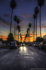 breaking dawn : street of los angeles (Kris Kros) Tags: california ca street morning blue trees sky orange art texture car sunrise dawn la early los am crazy angeles dusk touch loco el headlights row palm socal kris headlight column van pollo hdr kk textured kkg breaking nuys headon photomatix kros kriskros 5xp dusktodawn rowofpalmtrees kkgallery columnofpalmtrees