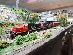 Canadian Northern (Larry the Lens) Tags: cn alco mlw rsd15