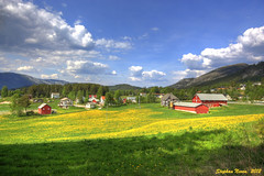 Norway in full colour (HDR) (Stephan Neven) Tags: blue red color colour green field yellow norway norge groen blauw village hill telemark rood primarycolors noorwegen fylke colorphotoaward primairekleuren mygearandmepremium kyrkjebygdi
