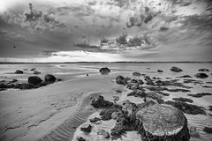 Low Tide (Vegan Zombie Photography) Tags: white storm black beach clouds photoshop canon silver ma eos high with mark iii structure software pro 5d nik nahant efx f4l cs5 w1740mm
