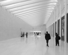 WTC walkway (hollertree) Tags: nyc path wtc slurry