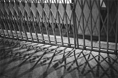 (frscspd) Tags: cambridge shadow window 50mm pentax crisscross 50mmf14 giulio kingsstreet