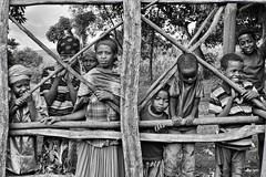 Saware Villagers (Rod Waddington) Tags: africa african afrika afrique ethiopia ethiopian ethnic etiopia ethnicity ethiopie etiopian thiopien wollaita wolayta group tribal tribe traditional village people