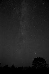 la voie lacte en noir et blanc (oudjat45) Tags: lavoielacteennoiretblanc photodenuit themilkywayblackandwhite diemilchstraseschwarzundweis etoiles stars stern flickrunitedaward