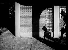 shadow on the wall (Zlatko Vickovic) Tags: streetstreetphoto streetphotography streetphotographybw streetbw streetphotobw blackandwhite monochrome zlatkovickovic zlatkovickovicphotography novisad serbia vojvodina srbija