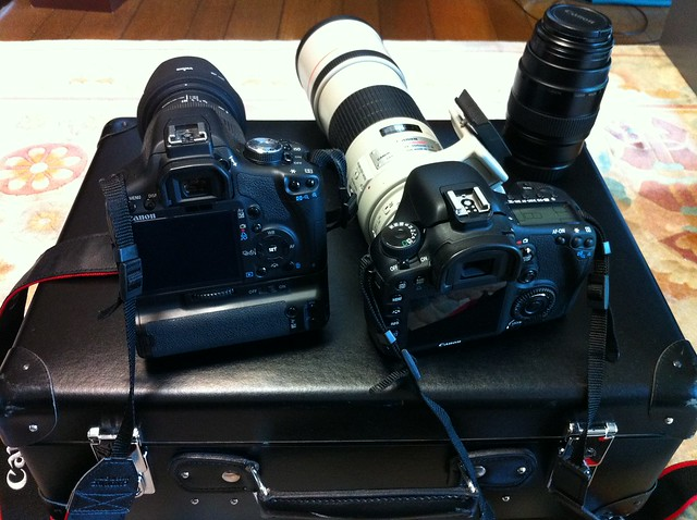 Canon Rebel T1i vs EOS 7D