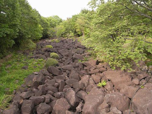 地上の天の川?大小の岩が連なる...