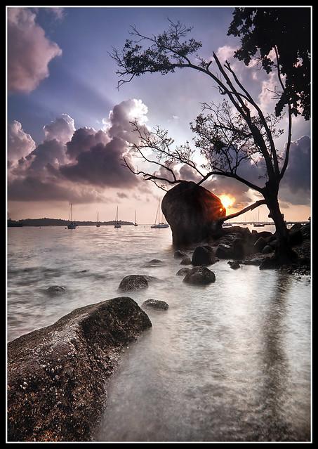 IMAGE: http://farm6.static.flickr.com/5152/5871111013_b8c1ef840f_z.jpg