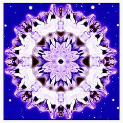 cosmic wisdom mandala (SueO'Kieffe) Tags: nature digital photoshop mandala spirituality