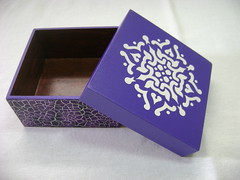 Caixa de MDF (Ivone Passos) Tags: caixa mdf craquelê box