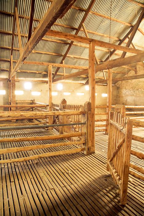 Arkaba Station shearing shed