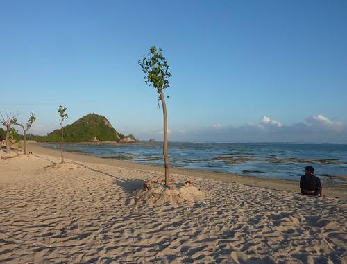 Indo 11-Lombok-Kuta (82)